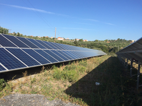 Maintenance services for 2x100kW plants in Messinia-Greece
